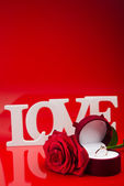 Composition of love white words and rose — Stock Photo