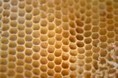 Tło o strukturze plastra miodu — Zdjęcie stockowe