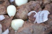 Macro food, garlic on fried liver — Stock Photo
