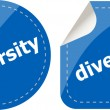 Diversity word on stickers button set, label — Stock Photo #54945261