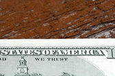 Hundreds of US dollars on old wooden plank — Stock Photo