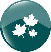 Maple leaf simgesi web düğme tarih — Stok Vektör