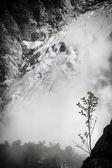 Mountain vegetation amid glacier in Norway — Stock Photo