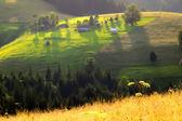 National Ukrainian village of Carpathian Mountains, dream landsc — Stock Photo