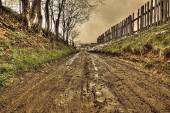 Dirt on the rural road, hdr — Stock Photo