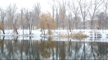 Falling snow on river — Stock Video