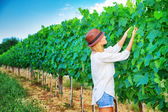 Farmer girl on vineyard — Foto Stock