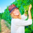 Woman working on grape field — Stock Photo #53654663