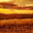 Yellow sunset over farmland — Stock Photo #53654871