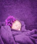 Stylish newborn girl — Stock Photo