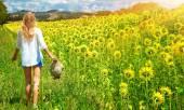 Walking in sunflowers field — Stock Photo