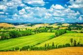 Amazing landscape — Stock Photo
