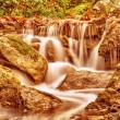 Beautiful waterfall in autumn park — Stock Photo #54587347