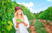 Happy woman on the vineyard — Stock Photo