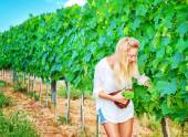 Beautiful young winemaker — Stock Photo