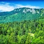 Beautiful mountain landscape — Stock Photo #70614303