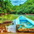 Old boat in tropical river — Stock Photo #71217709