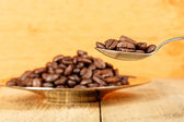 Coffee beans in a spoon — Stock Photo