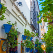 Full of flowers in the city of Cordoba Andalusian street, Spain — Stock Photo #60914709
