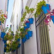 Typical windows with grilles and decorative flowers in the city — Stock Photo #61315601