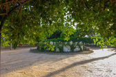 Vegetation and gardens Park Nicolas Salmeron in Almeria, Spain — Stock Photo