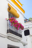 Typical windows with grilles and decorative flowers in the city — Stock Photo