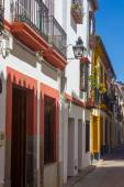 Typical whitewashed houses along the streets of the city of Cord — Stock Photo