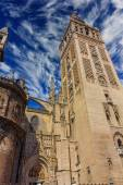 View of the famous Giralda in Seville, Spain — Stock Photo