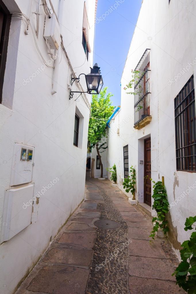 Calles de casas blancas t picas de la ciudad de c rdoba - Inmobiliarias en cordoba espana ...