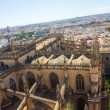 Cathedral of Santa Maria de Sevilla view from the Giralda in Sev — Stock Photo #61323645