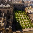Cathedral of Santa Maria de Sevilla view from the Giralda in Sev — Stock Photo #61323649