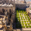 Cathedral of Santa Maria de Sevilla view from the Giralda in Sev — Stock Photo #61323655