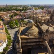 Cathedral of Santa Maria de Sevilla view from the Giralda in Sev — Stock Photo #61323671