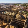 Cathedral of Santa Maria de Sevilla view from the Giralda in Sev — Stock Photo #61323685