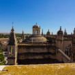 Cathedral of Santa Maria de Sevilla view from the Giralda in Sev — Stock Photo #61323693