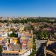 Cathedral of Santa Maria de Sevilla view from the Giralda in Sev — Stock Photo #61323697