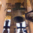 Old bells of the Cathedral of the Giralda in Seville Spain — Stock Photo #61323771