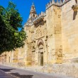 Side facade of the Great Mosque of Cordoba, Spain — Stock Photo #61325319