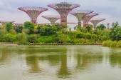 Singapore Supertrees — Stock Photo