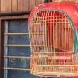 Dove in a birdcage — Stock Photo #72981121