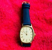 MILUS wristwatch. — Foto Stock