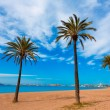Playa Paraiso beach in Manga Mar Menor Murcia — Stock Photo #54590281