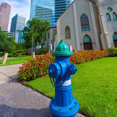 Fire hydrant blue in Houston Clay St Downtown — Стоковое фото