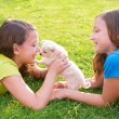 Twin sister kid girls and puppy dog lying in lawn — Stock Photo #57791691
