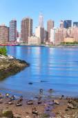 Manhattan New York skyline East River with ducks — Stock Photo