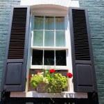 Georgetown townhouses window Washington DC — Stock Photo #65851097