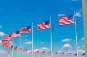 Washington Monument flags in DC USA — Stok fotoğraf