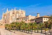 Majorca Palma Cathedral Seu Seo of Mallorca — Stock Photo