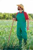 Farmer man working in onion orchard with hoe — Stock Photo