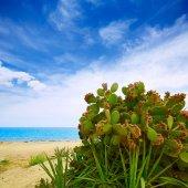 Альмерия Mojacar beach Средиземное море Испания — Стоковое фото
